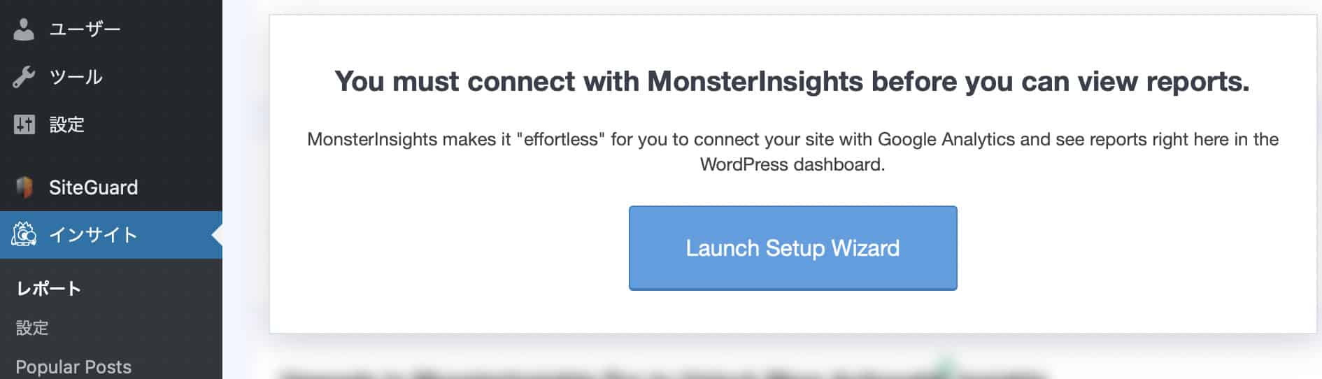 MonsterInsightsのインサイトを選択